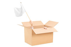 Man waving a white flag hidden in a carton box Royalty Free Stock Photo