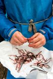 Man cleaning anchovies fish in close up. Man wearing blue apron cleaning anchovies fish in close up Stock Photo