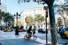 Man Wearing Blue T-shirt Riding Bicycle on Street Stock Photo