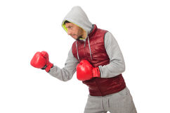 Man wearing boxing gloves isolated on white Royalty Free Stock Photo