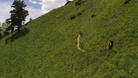 Man wearing child in hiking carrying. Adventure journey destination. Aerial shot. Tourist trail passing on slope green hill. Trekking with backpack and trekking stock video footage