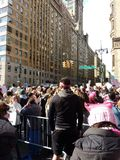 Man Wearing Pink Bandanna, Crowd, New York City Women`s March, Central Park West, NYC, NY, USA Stock Photos