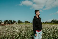 Man Wearing Pullover Hoodie Standing on Flower Field Royalty Free Stock Images