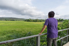 A man wearing a purple t shirt and standing with his back in a meadow. With cloud in the morning. Winter season concept., with copy space for text., relaxing Royalty Free Stock Photography