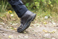 Man Wearing Shoe While Trekking On Forest Trail Royalty Free Stock Photography