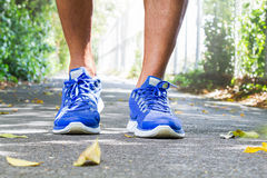 Man wearing sport shoes walking in the park. Sport concept Stock Photos
