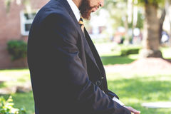 Man Wearing A Suit Royalty Free Stock Images