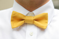 Man wearing yellow bow tie Stock Photo
