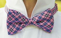 A man wears a chequered pink bow tie Stock Image