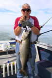 Man Weighing Large Fish - King Salmon. A picture of a man holding and weighing a large fish, a Chinook, or King Salmon, caught on Lake Ontario near Henderson royalty free stock photo