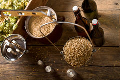 Free Man Weighs Malt For Home Brewing Of Beer. Top View. Stock Photography - 98100582