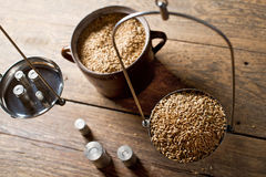 Man Weighs Malt for Home Brewing of Beer. Royalty Free Stock Photography
