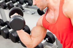Man with weight training equipment on sport gym. Man with weight training equipmant on sport gym club Royalty Free Stock Photo
