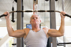 Man Weight Training At Gym Royalty Free Stock Images