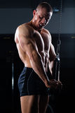 Man at weights training in gym Stock Photography