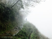 man at wet pathway on hill slope in rain Stock Photos