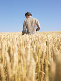 Man in Wheat Field Stock Photography