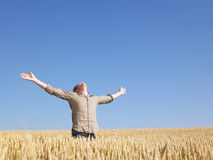 Man in Wheat Field With Arms Outstretched Royalty Free Stock Photos