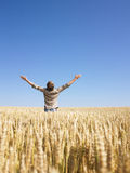 Man in Wheat Field With Arms Outstretched stock photography