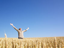 Man in Wheat Field With Arms Outstretched Stock Photos