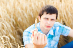 Man on wheat field Stock Images