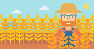 Man in wheat field. A hipster man with the beard standing in a wheat field vector flat design illustration. Horizontal layout Royalty Free Stock Images