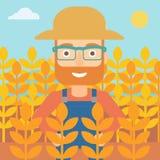 Man in wheat field. Stock Photo