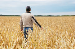 The man among a wheaten field Stock Photography