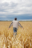 The man among a wheaten field Stock Image