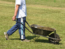Man with wheelbarrow full of manure stock photos