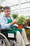 Man in wheelchair holding potted plant in garden center Royalty Free Stock Photography