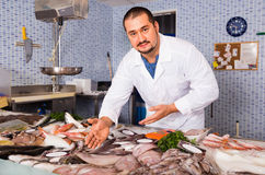 Man in white cover-slut showing fish on counter Royalty Free Stock Photography