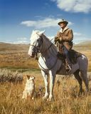 Man on White Horse Next to Dog on Grassy Field Royalty Free Stock Photography