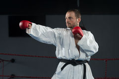 Man In White Kimono And Black Belt Training Karate Stock Images