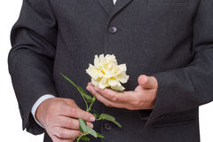 Man with a white rose Royalty Free Stock Images