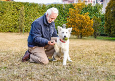 Man with White Swiss Shepherd puppy. Royalty Free Stock Photography