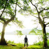 The man who cant be move. The man standing between under two big tree, he see lake and the bright light Royalty Free Stock Photography