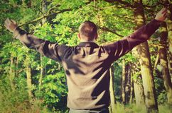 Man who loves nature. A man with his arms raised in the forest royalty free stock image
