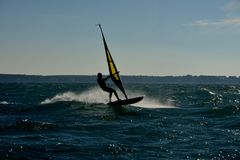 Man windsurfing stock image