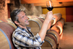 Man in wine cellar. Winemaker checking red wine quality in wine cellar Royalty Free Stock Images