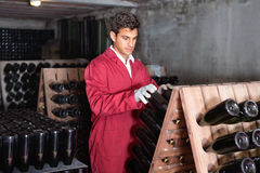 Man winery   working in aging section with bottle racks in cella Stock Image