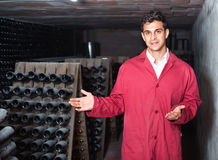 Man winery   working in aging section with bottle racks in cella. Attentive glad  friendly man winery employee wearing coat working in aging section with bottle Stock Photography