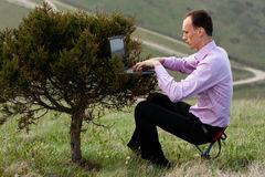 Man With Computer On Tree Stock Photos