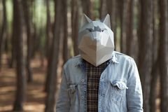 Man with wolf mask on head. stock photos