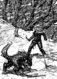 Man and wolf at night in the snowy forest. Man and wolf ready to fight at night in the snowy forest Stock Images