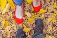 feet of a man and a girl are shod in shoes, standing on the aspen leaves stock photography