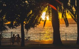 Man and woman on bench at sunset. Romantic scene of couple sitting on bench, looking at beautiful sunset at seaside framed with silhouettes of palm trees Stock Image
