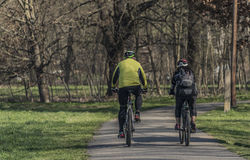 Man and woman on bicycles in sunny spring day Royalty Free Stock Photo