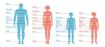 Man, woman, boy and girl Size Chart. Human front side Silhouette. Isolated on White Background. Vector illustration royalty free illustration