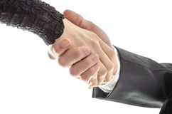 Man and woman business handshake Royalty Free Stock Images